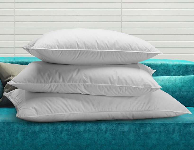 Renaissance Hotel Pillow Collection Shop Feather And