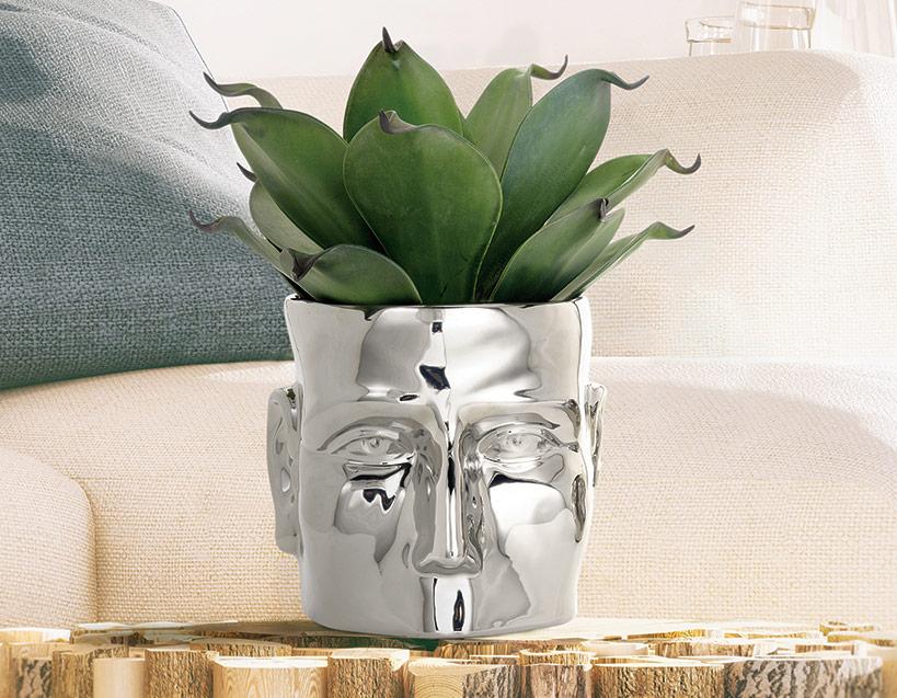 Face Vase Collect Renaissance